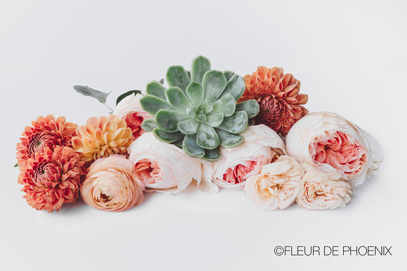 Roses and succulent